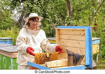 apiculteur nouvelle zelande