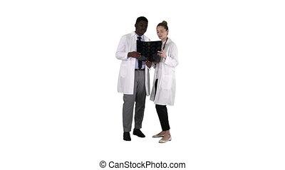 femme, arrière-plan., étude, docteur, cerveau, américain, sérieux, x, blanc, gentil, afro, rayon