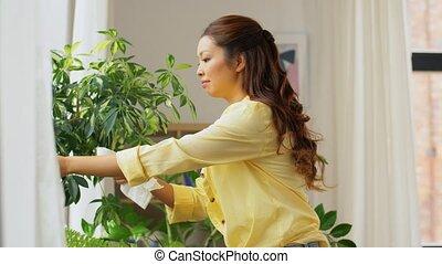 femme, asiatique, houseplant, nettoyage, heureux
