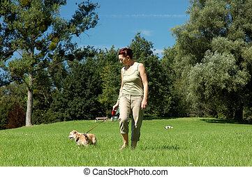 femme, chien, elle, promenades