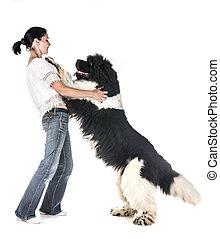 femme, chien terre-neuve