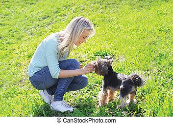femme, chien, yorkshire, propriétaire, amusement, herbe, terrier, avoir