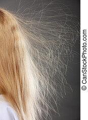 femme closeup, hair., statique, blond