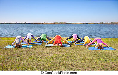femme, couple, arbre, pratique, lakeside., homme, yoga, asana
