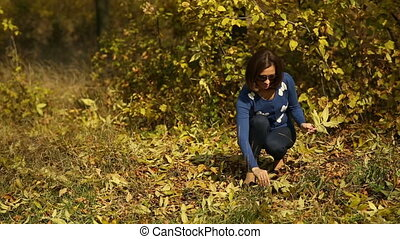 femme, cueillette, feuilles, érable, automne