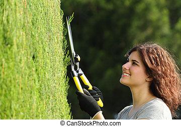 femme, cyprès, haut, jardinier, fin, taille