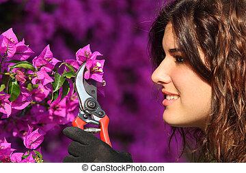femme, découpage, séduisant, sécateur, fleurs, jardinier