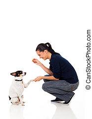 femme, elle, donner, chien, aliment apprivoisé