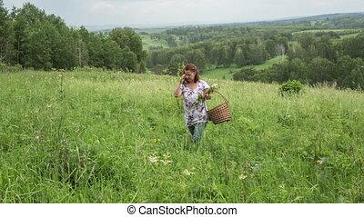 femme, forêt