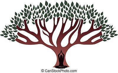 femme, grand arbre, méditer, sous, épais