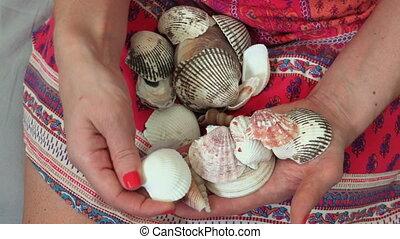 femme, hands.holiday, concept, elle, mémoire, coquilles