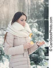 femme, hiver, bouquet, feuilles, jeune, automne, portrait
