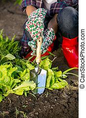 femme, jardin, fonctionnement, jeune, lit, closeup, bêche