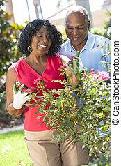 femme, jardinage, couple, américain, africaine, homme aîné