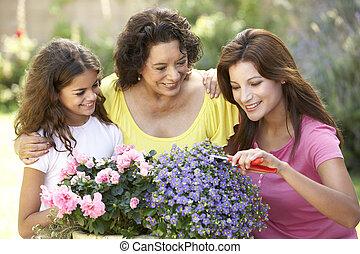femme, jardinage, petite-fille, ensemble, adulte, fille, ...