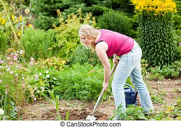 femme, jardinage, sol, sur, -, creuser