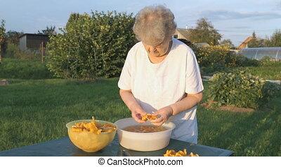 femme, nettoie, personnes agées, champignons, 80s, chanterelle