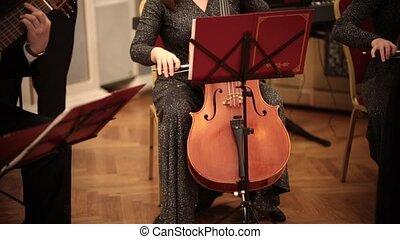 femme, orchestra., long, chambre, violoncelle, robe, jouer