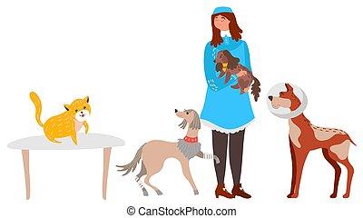 femme, ou, gens, clinique, volontaire, centre, abri, illustration, vétérinaire, vecteur, soin, chouchou, animal, chiens