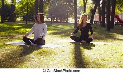 femme, parc, yoga., méditer, deux, séduisant