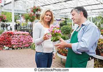 femme parler, à, ouvrier, sur, plante