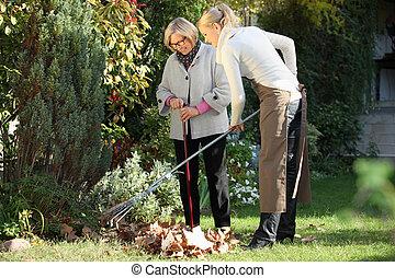 femme, personnes agées, elle, jardinier