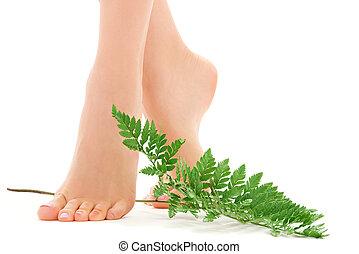femme, pieds, à, feuille verte