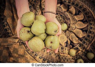 femme, pommes, tenue, tas