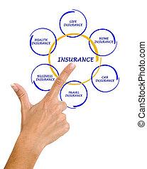 femme, présentation, assurance, diagramme