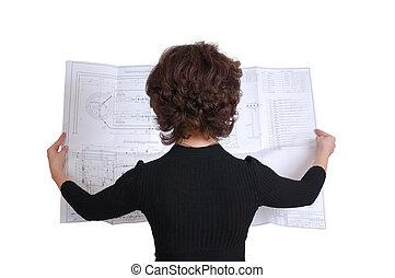 femme, quelques-uns, ingénierie, architecte, tenue, plans