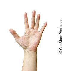 femme, signe., isolé, main, fond, confection, blanc