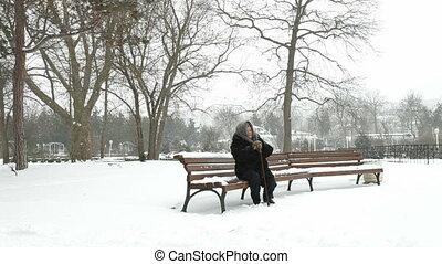 femme, solitaire, neigeux, parc, personne agee