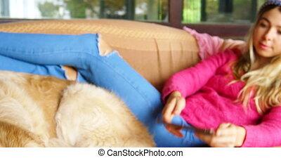 femme, tablette, elle, sofa, chien, quoique, 4k, numérique, utilisation, caresser