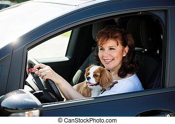 femme voiture, chien, conduite
