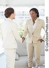 femmes affaires, mains secouer, réunion