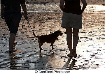 femmes, promener chien