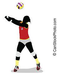 femmes, vecteur, volley-ball, silhouette.