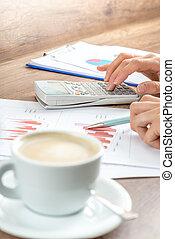 femmina, affari, ragioniere, correzione bozze, finanziario, relazione annuale