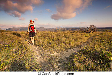 femmina, bushwalker, andando gita, in, il, montagne blu