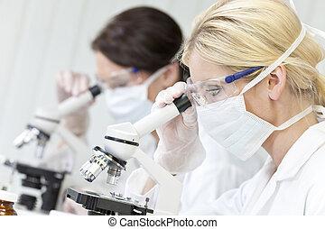 femmina, ricerca scientifica, squadra, usando, microscopi, in, uno, laborator