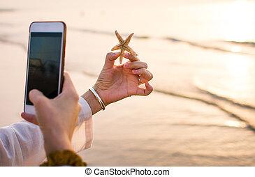 femmina, ritratto prende, di, uno, starfish, spiaggia