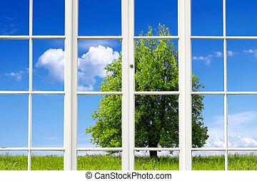 fenêtre, écologie