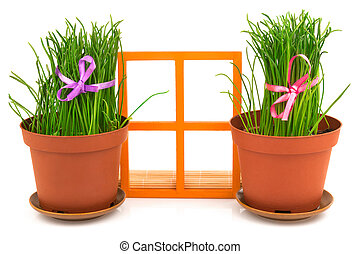 fenêtre, composition