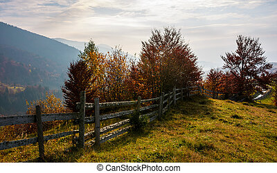 fence along the grassy hillside. beautiful autumn scenery in...