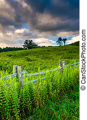 Fence and field along the Blue Ridge Parkway in North Carolina.