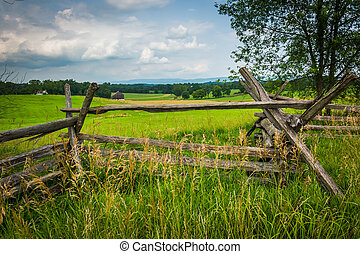 Fence and tree in a field at Antietam National Battlefield,...