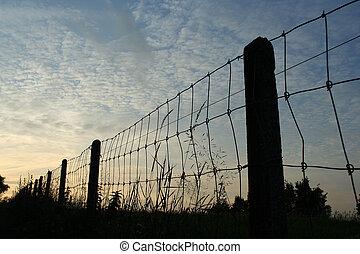fence at dusk
