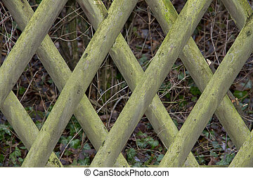 Fence, background