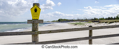 fence blocks access to the Western Pomerania Lagoon Area National Park  at the baltic sea  near Zingst, Germany