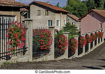 Fence decoration with geranium